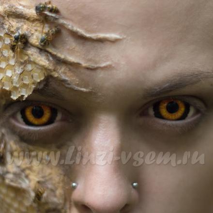 Склеральные линзы Lensmam Evil Ed Фото 3
