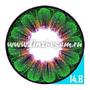 Цветные линзы EOS Daisy 3T Green Фото 4
